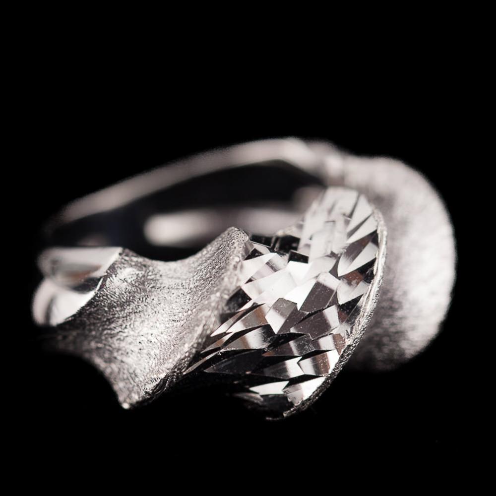 Verfijnde ring van gepolijst en mat zilver