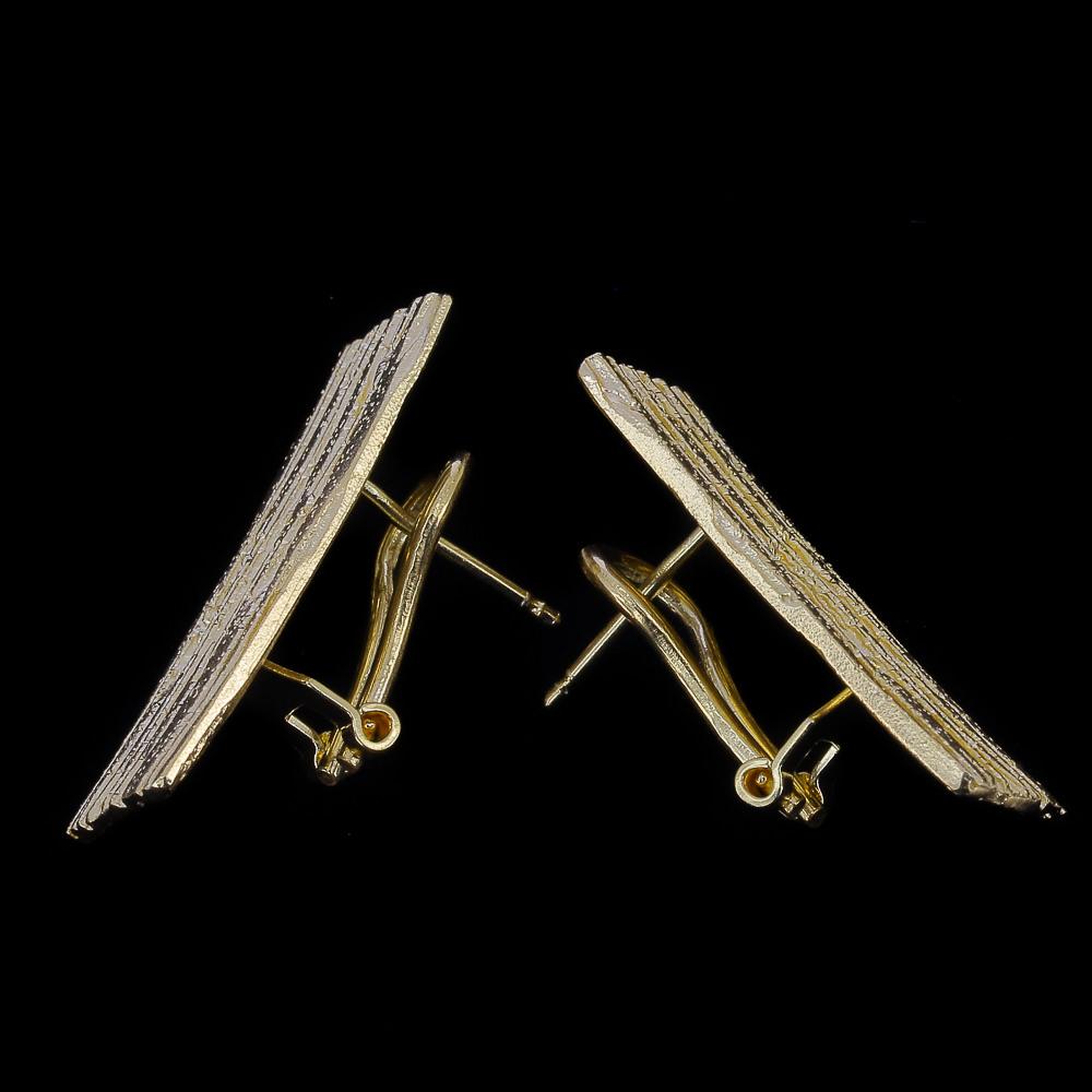Vergulde rechthoekige en schitterende oorbellen