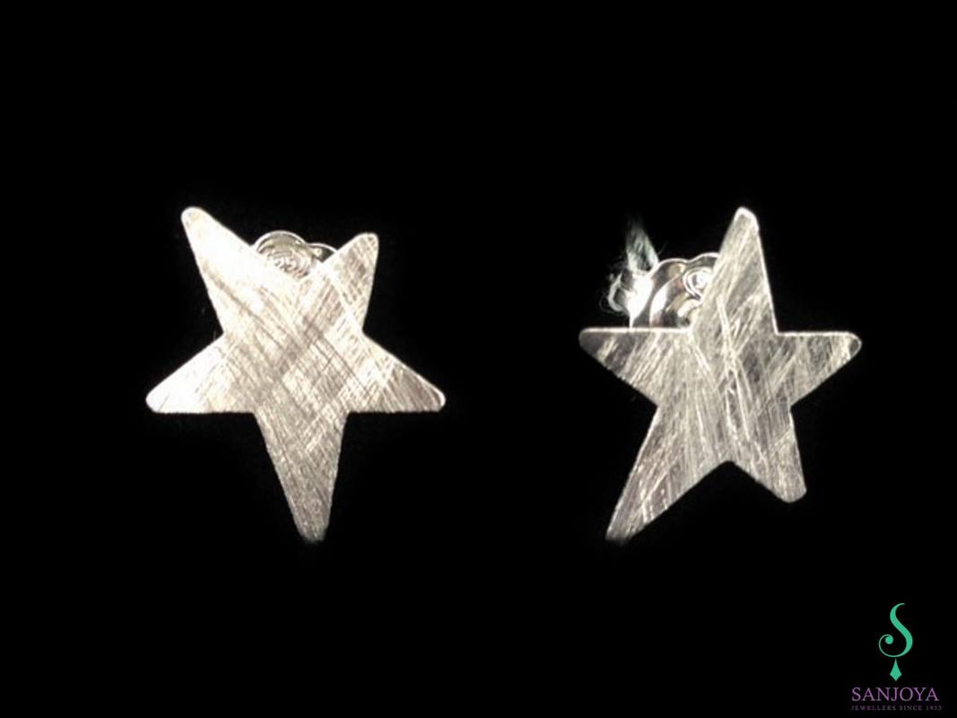 Zilvermatte ster-oorbellen